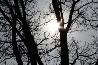 sun-726032_1280